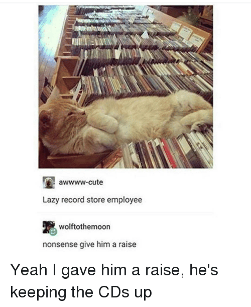 record store: awwww-cute  Lazy record store employee  R wolftothoemoon  nonsense give him a raise Yeah I gave him a raise, he's keeping the CDs up