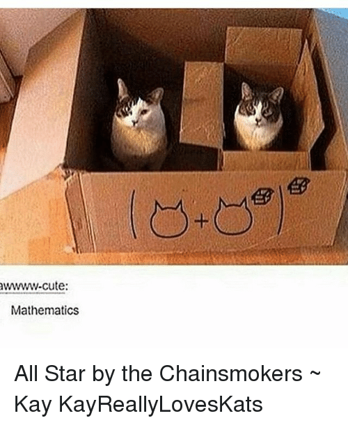 All Star, Tumblr, and All: awwwww-cute:  Mathematics All Star by the Chainsmokers ~ Kay KayReallyLovesKats