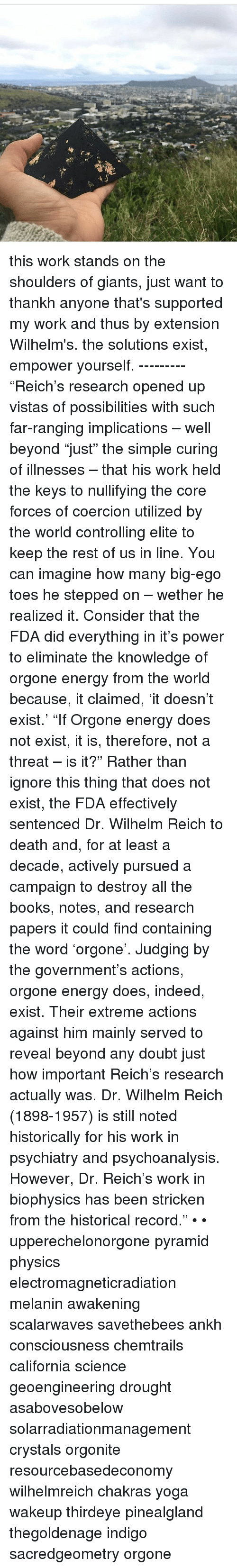 wilhelm reich research papers