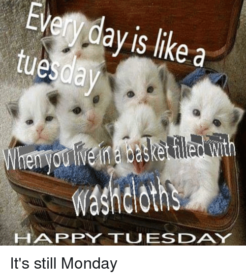 Happy, Dank Memes, and Happiness: ay is like a  IS like a  ue  washcloths  Clot  HAPPY TUESDAY  Ad It's still Monday