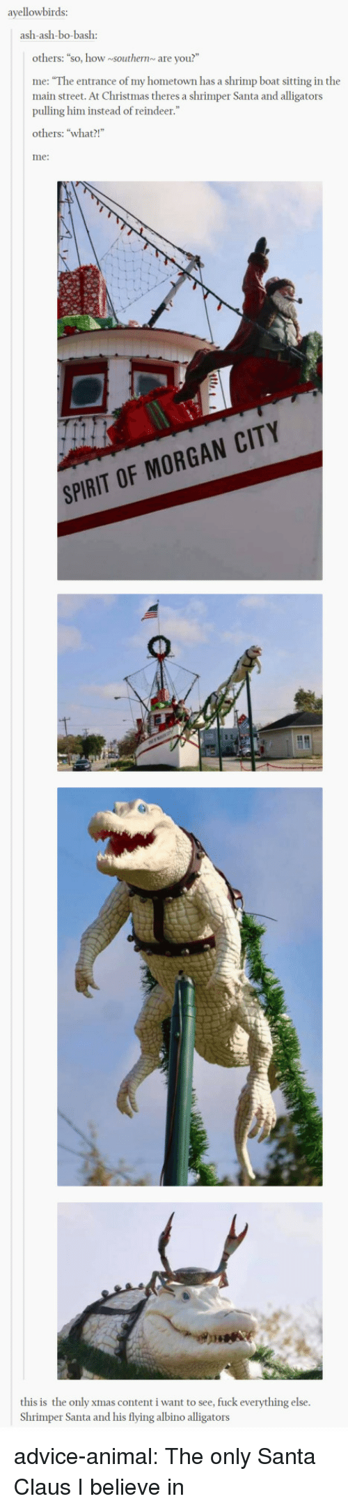 "My Hometown: ayellowbirds:  ash-ash-bo-bash:  others: ""so, how southernare you?""  me: ""The entrance of my hometown has a shrimp boat sitting in the  main street. At Christmas theres a shrimper Santa and alligators  pulling him instead of reindeer.""  others: ""what?!  me:  SPIRIT OF MORGAN CITY  this is the only xmas content i want to see, fuck everything else  Shrimper Santa and his flying albino alligators advice-animal:  The only Santa Claus I believe in"
