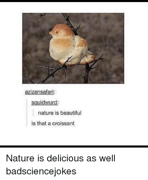 Memes, 🤖, and Croissant: azizansafar  sguidwurd:  nature is beautiful  is that a croissant Nature is delicious as well badsciencejokes
