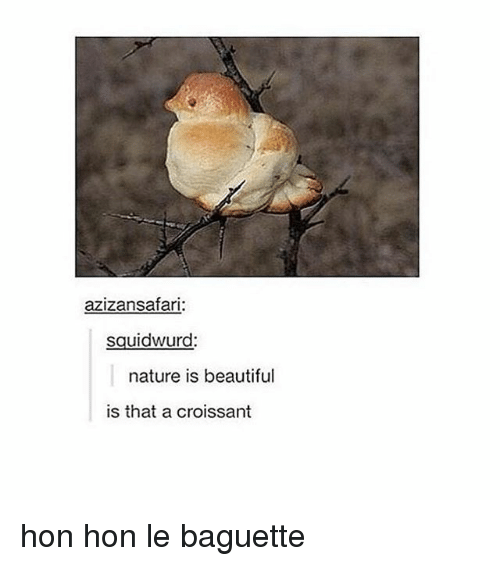 Nature Is Beautiful Is That A Croissant