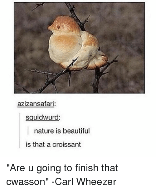 "Beautiful, Carl Wheezer, and Nature: azizansafari  squidwurd.  nature is beautiful  is that a croissant ""Are u going to finish that cwasson"" -Carl Wheezer"