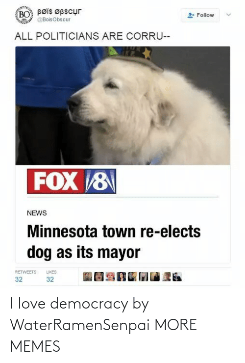 mayor: Bøis Øpscur  BO  Follow  @BoisObscur  ALL POLITICIANS ARE CORRU--  FOX 8  NEWS  Minnesota town re-elects  dog as its mayor  LIKES  RETWEETS  32  32 I love democracy by WaterRamenSenpai MORE MEMES