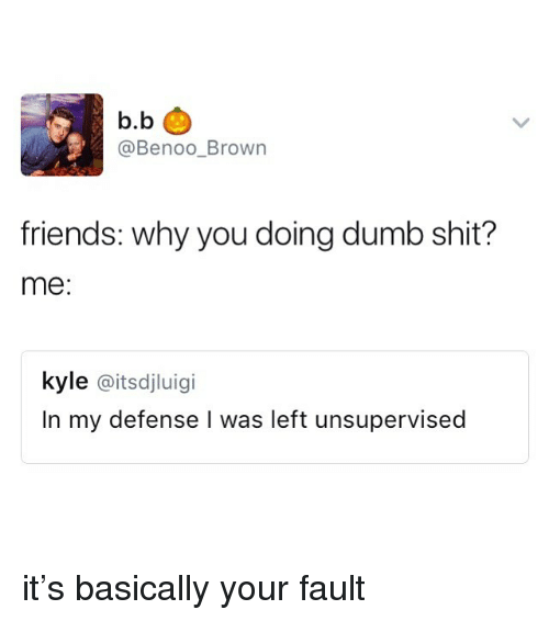 Dumb, Friends, and Shit: b.b  @Benoo_Brown  friends: why you doing dumb shit?  me:  kyle @itsdjluigi  In my defense I was left unsupervised it's basically your fault