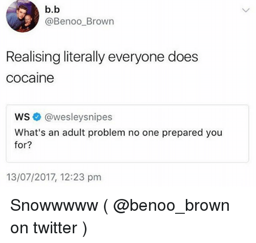 adultism: b.b  @Benoo_Brown  Realising literally everyone does  cocaine  ws @wesleysnipes  What's an adult problem no one prepared you  for?  for?  13/07/2017, 12:23 pm Snowwwww ( @benoo_brown on twitter )