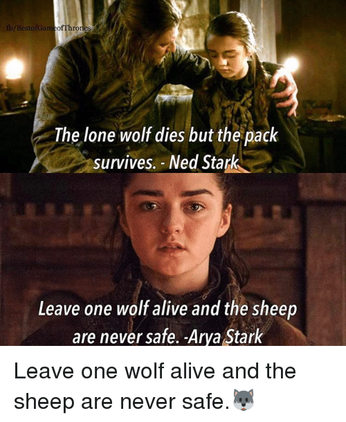 lone wolf: b/BestofGameofThro  The lone wolf dies but the pack  survives. Ned Stark  Leave one wolf alive and the sheep  are never safe. -Arya Stark Leave one wolf alive and the sheep are never safe.🐺