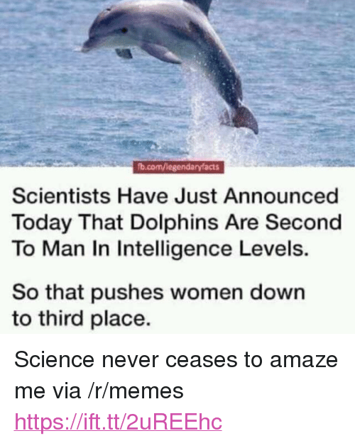 """Memes, Dolphins, and Science: b.com/legendaryfacts  Scientists Have Just Announced  Today That Dolphins Are Second  To Man In Intelligence Levels.  So that pushes women down  to third place. <p>Science never ceases to amaze me via /r/memes <a href=""""https://ift.tt/2uREEhc"""">https://ift.tt/2uREEhc</a></p>"""