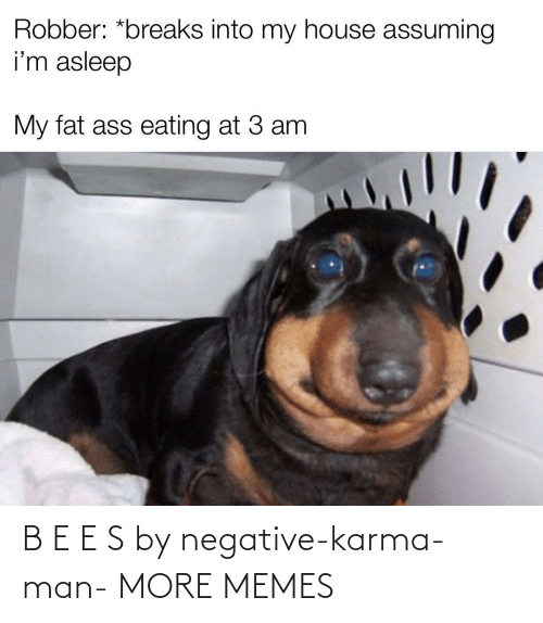 Karma: B E E S by negative-karma-man- MORE MEMES