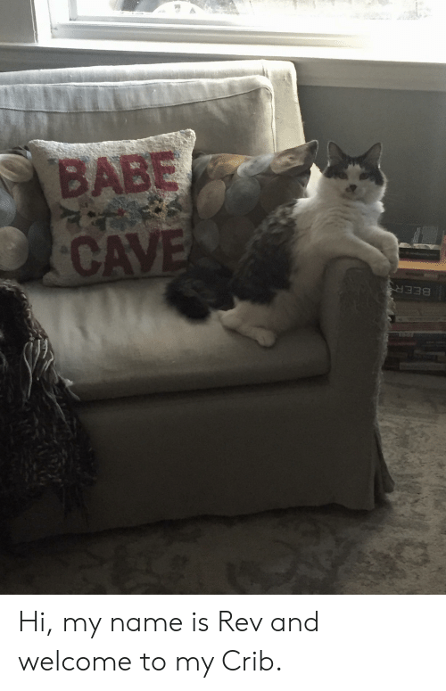 Welcome To My Crib: BABE  CAVES  BEER  FOOR Hi, my name is Rev and welcome to my Crib.