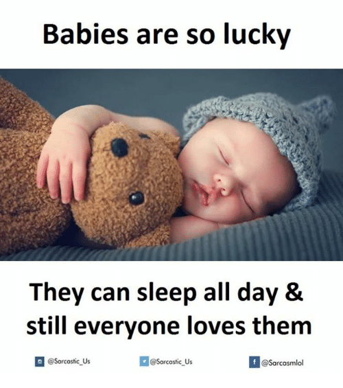 All Day: Babies are so lucky  They can sleep all day &  still everyone loves them  @sarcastic us  @@sarcastic Us  @Sarcasmlol