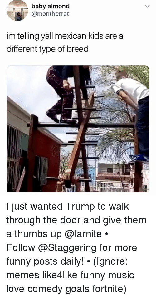 Funny, Goals, and Love: baby almond  7 @montherrat  im telling yall mexican kids are a  different type of breed I just wanted Trump to walk through the door and give them a thumbs up @larnite • ➫➫➫ Follow @Staggering for more funny posts daily! • (Ignore: memes like4like funny music love comedy goals fortnite)