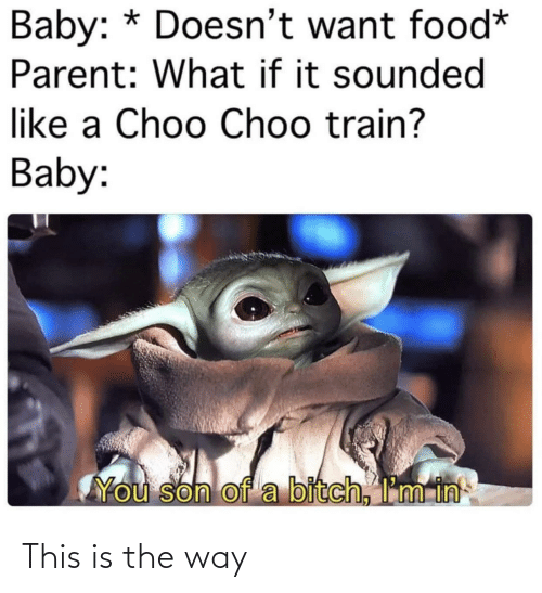 parent: Baby: * Doesn't want food*  Parent: What if it sounded  like a Choo Choo train?  Baby:  You son of a bitch, I'm in This is the way