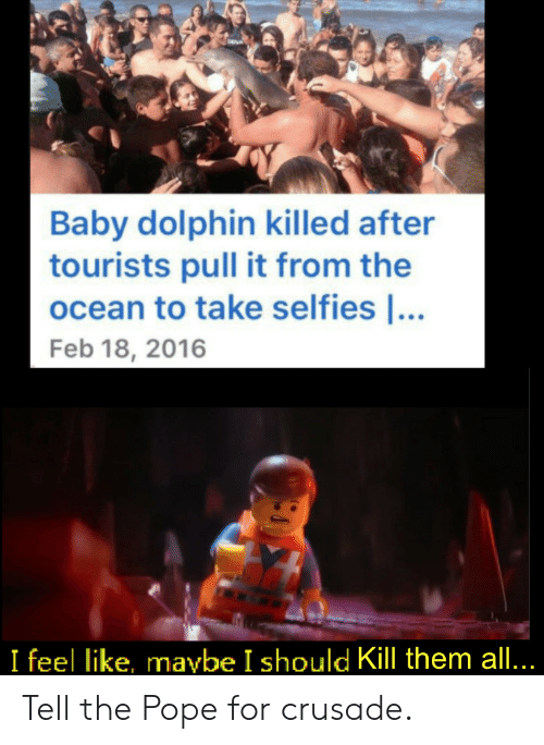 selfies: Baby dolphin killed after  tourists pull it from the  ocean to take selfies ...  Feb 18, 2016  I feel like, maybe I should Kill them all... Tell the Pope for crusade.