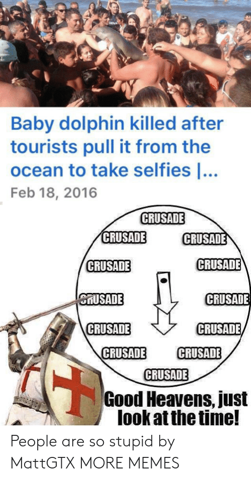 Dolphin: Baby dolphin killed after  tourists pull it from the  ocean to take selfies ...  Feb 18, 2016  CRUSADE  CRUSADE  CRUSADE  CRUSADE  CRUSADE  CRUSADE  CRUSADE  CRUSADE  CRUSADE  CRUSADE  CRUSADE  CRUSADE  Good Heavens, just  look at the time! People are so stupid by MattGTX MORE MEMES