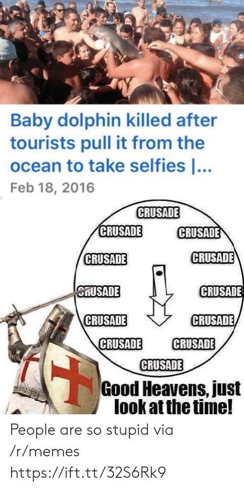 Dolphin: Baby dolphin killed after  tourists pull it from the  ocean to take selfies ...  Feb 18, 2016  CRUSADE  CRUSADE  CRUSADE  CRUSADE  CRUSADE  CRUSADE  CRUSADE  CRUSADE  CRUSADE  CRUSADE  CRUSADE  CRUSADE  Good Heavens, just  look at the time! People are so stupid via /r/memes https://ift.tt/32S6Rk9