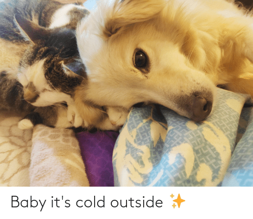 Baby, It's Cold Outside: Baby it's cold outside ✨