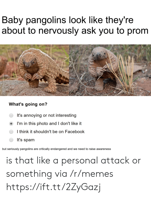 Dont Like It: Baby pangolins look like they're  about to nervously ask you to prom  What's going on?  It's annoying or not interesting  I'm in this photo and I don't like it  I think it shouldn't be on Facebook  It's spam  but seriously pangolins are critically endangered and we need to raise awareness is that like a personal attack or something via /r/memes https://ift.tt/2ZyGazj