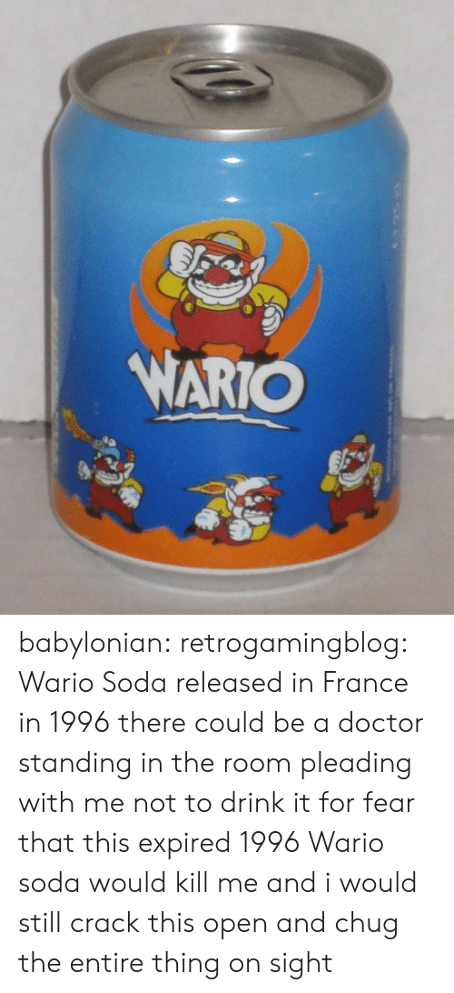 Babylonian: babylonian: retrogamingblog: Wario Soda released in France in 1996 there could be a doctor standing in the room pleading with me not to drink it for fear that this expired 1996 Wario soda would kill me and i would still crack this open and chug the entire thing on sight