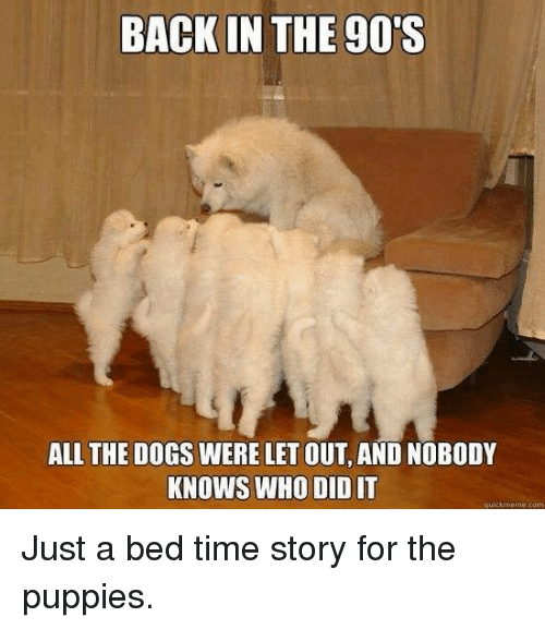 Time Story: BACK IN THE 90S  ALL THE DOGS WERE LET OUT, AND NOBODY  KNOWS WHO DID IT  quickmeme Just a bed time story for the puppies.