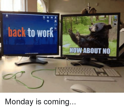 Memes, 🤖, and How About No: back to  work  HOW ABOUT NO Monday is coming...