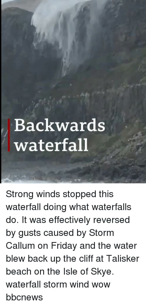 Friday, Memes, and Wow: Backwards  waterfall Strong winds stopped this waterfall doing what waterfalls do. It was effectively reversed by gusts caused by Storm Callum on Friday and the water blew back up the cliff at Talisker beach on the Isle of Skye. waterfall storm wind wow bbcnews