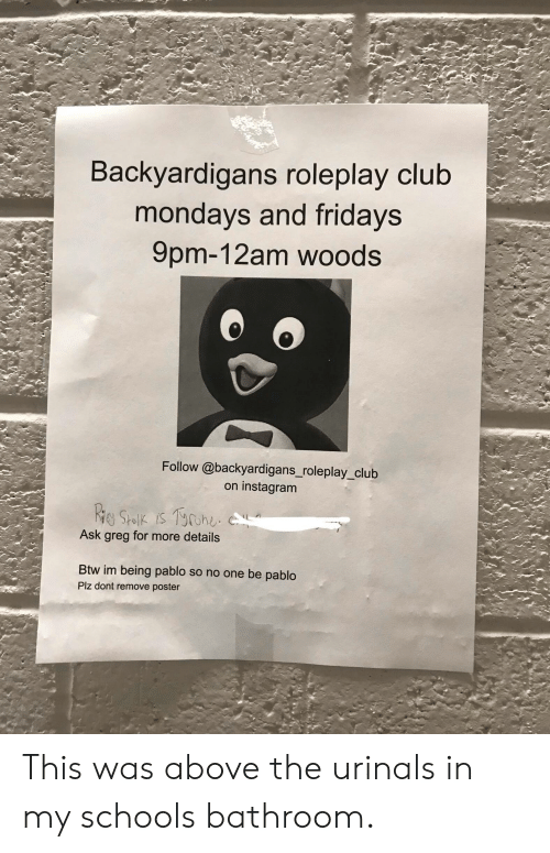 backyardigans: Backyardigans roleplay club  mondays and fridays  9pm-12am woods  Follow @backyardigans_roleplay_club  instagram  on  Riey Stolik is Tohe  Ask greg for more details  Btw im being pablo so no one be pablo  Plz dont remove poster This was above the urinals in my schools bathroom.