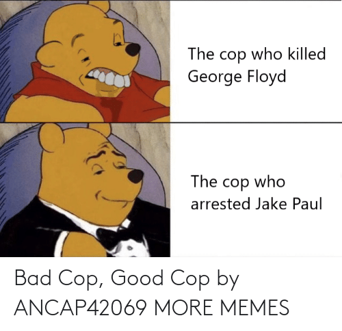 cop: Bad Cop, Good Cop by ANCAP42069 MORE MEMES