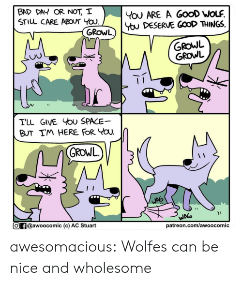 Here For You: BAD DAY OR NOT, I  STILL CARE ABOUT YOU  YoU ARE A GooD WOLF  You DESERVE GOOD THINGS  GROWL)  GROWL  GROWL  TLL GIVE bu SPACE  BUT IM HERE FOR YOU  GROWL  WAG  WAG  @awoocomic (c) AC Stuart  patreon.com/awoocomic awesomacious:  Wolfes can be nice and wholesome