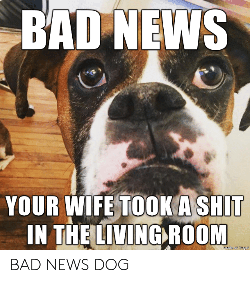 living room: BAD NEWS  YOUR WIFE TOOK A SHIT  IN THE LIVING ROOM BAD NEWS DOG