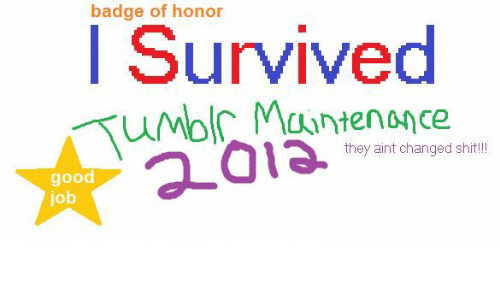 badge: badge of honor  I Survived  they aint changed shit!  good  job