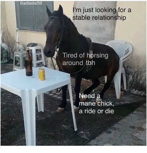 looking for a stable relationship