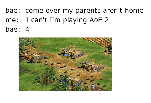 aoe 2: bae: come over my parents aren't home  me: I can't I'm playing AoE 2  bae: 4