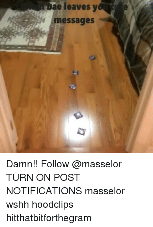 Memes, 🤖, and Damned: bae leaves leaves y  messages Damn!! Follow @masselor TURN ON POST NOTIFICATIONS masselor wshh hoodclips hitthatbitforthegram