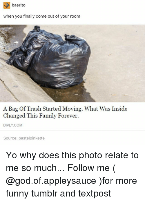 Family, Funny, and God: baerito  when you finally come out of your room  A Bag Of Trash Started Moving. What Was Inside  Changed This Family Forever.  DIPLY.COM  Source: pastelpinkette Yo why does this photo relate to me so much... Follow me ( @god.of.appleysauce )for more funny tumblr and textpost