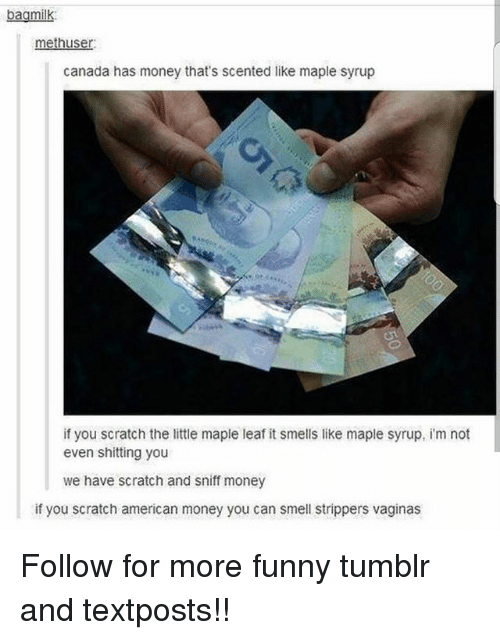 Funny, Memes, and Money: bagmilk  bagmilk:  methuser  canada has money that's scented like maple syrup  if you scratch the ittle maple leaf it smells like maple syrup, i'm not  even shitting you  we have scratch and sniff money  if you scratch american money you can smell strippers vaginas Follow for more funny tumblr and textposts!!