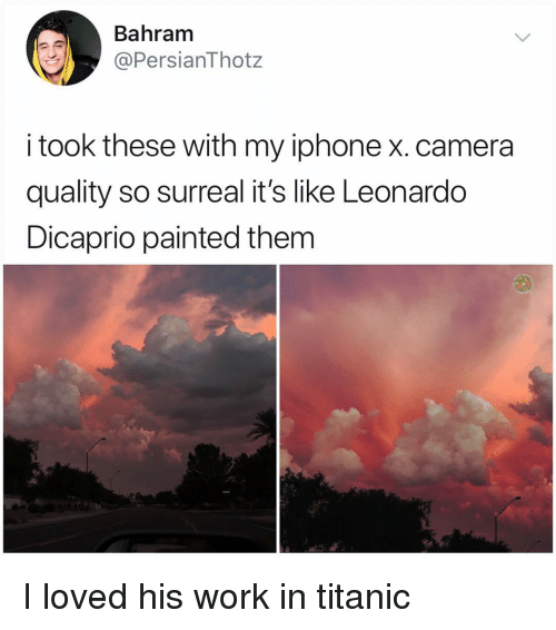 Iphone, Leonardo DiCaprio, and Memes: Bahram  @PersianThotz  i took these with my iphone x. camera  quality so surreal it's like Leonardo  Dicaprio painted them I loved his work in titanic