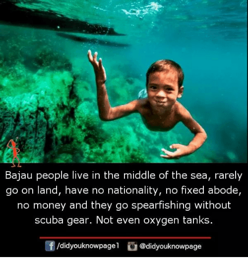 Memes, Money, and Live: Bajau people live in the middle of the sea, rarely  go on land, have no nationality, no fixed abode,  no money and they go spearfishing without  scuba gear. Not even oxygen tanks  f/didyouknowpagel @didyouknowpage