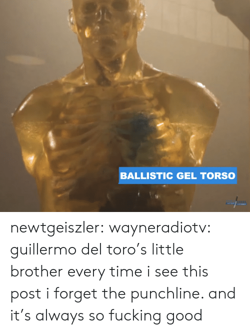 toro: BALLISTIC GEL TORSO newtgeiszler: wayneradiotv: guillermo del toro's little brother every time i see this post i forget the punchline. and it's always so fucking good