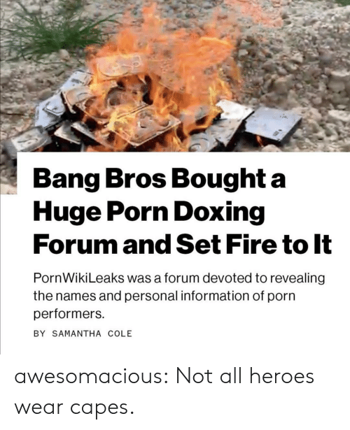 capes: Bang Bros Bought a  Huge Porn Doxing  Forum and Set Fire to It  PornWikiLeaks was a forum devoted to revealing  the names and personal information of porn  performers  BY SAMANTHA COLE awesomacious:  Not all heroes wear capes.