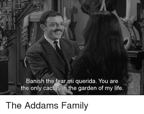 addams family: Banish the fear mi querida. You are  the only cactus in the garden of my life The Addams Family