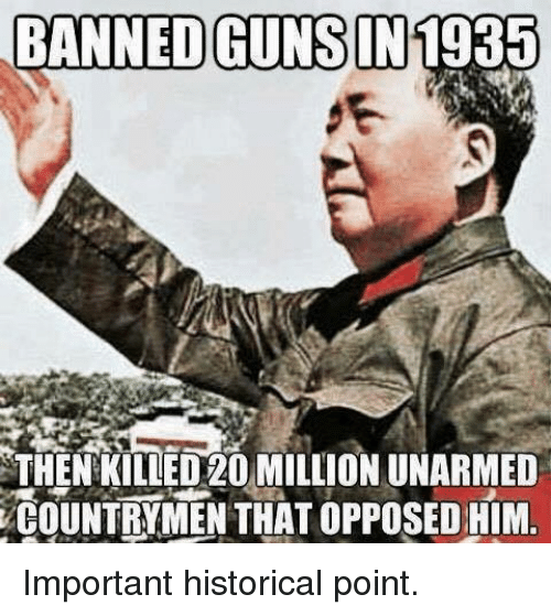 Guns, Memes, and Historical: BANNED GUNS IN  RAINED GUR.ST  1935  THEN KILLED20 MILLION UNARMED  COUNTRYMEN THAT OPPOSED HIM Important historical point.