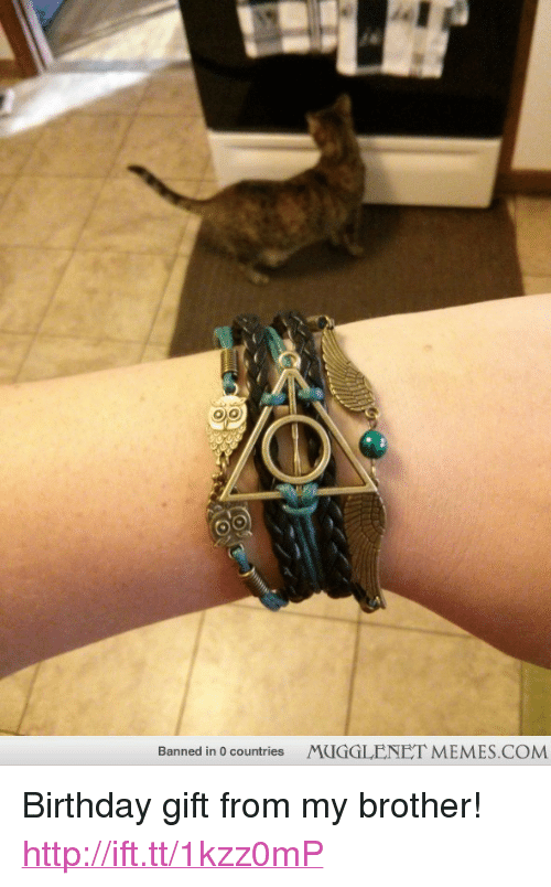 """Birthday: Banned in 0 countries  MUGGLENET MEMES.COM <p>Birthday gift from my brother! <a href=""""http://ift.tt/1kzz0mP"""">http://ift.tt/1kzz0mP</a></p>"""