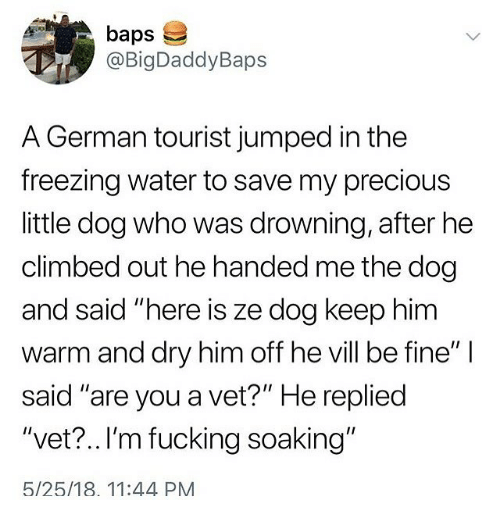"""Fucking, Memes, and Precious: baps  @BigDaddyBaps  A German tourist jumped in the  freezing water to save my precious  little dog who was drowning, after he  climbed out he handed me the dog  and said """"here is ze dog keep him  warm and dry him off he vill be fine""""  said """"are you a vet?"""" He repliec  """"vet? ..I'm fucking soaking""""  5/25/18. 11:44 PM"""