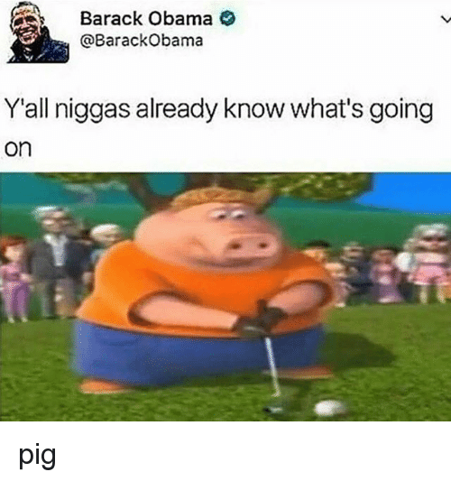 Pigly: Barack Obama  @Barack Obama  Y all niggas already know what's going  On pig