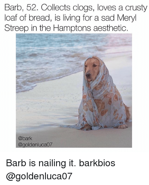 Memes, Aesthetic, and Meryl Streep: Barb, 52. Collects clogs, loves a crusty  loaf of bread, is living for a sad Meryl  Streep in the Hamptons aesthetic.  @bark  ca07  @golden Barb is nailing it. barkbios @goldenluca07