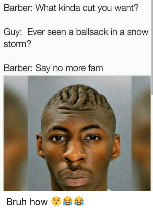 Barber, Bruh, and Fam: Barber: What kinda cut you want?  Guy: Ever seen a ballsack in a snow  storm?  Barber: Say no more fam Bruh how 😯😂😂