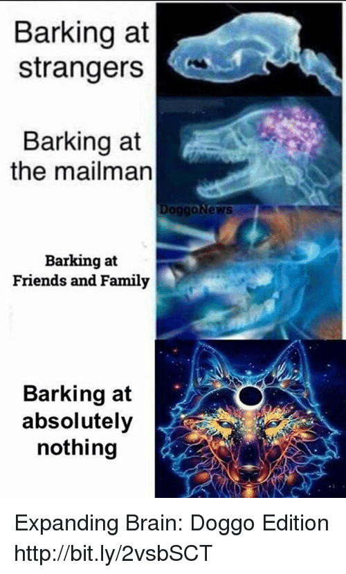 Expanding Brain: Barking at  strangers  Barking at  the mailman  oggonews  Barking at  Friends and Family  Barking at  absolutely  nothing Expanding Brain: Doggo Edition http://bit.ly/2vsbSCT