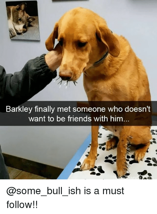 Friends, Memes, and 🤖: Barkley finally met someone who doesn't  want to be friends with him... @some_bull_ish is a must follow!!